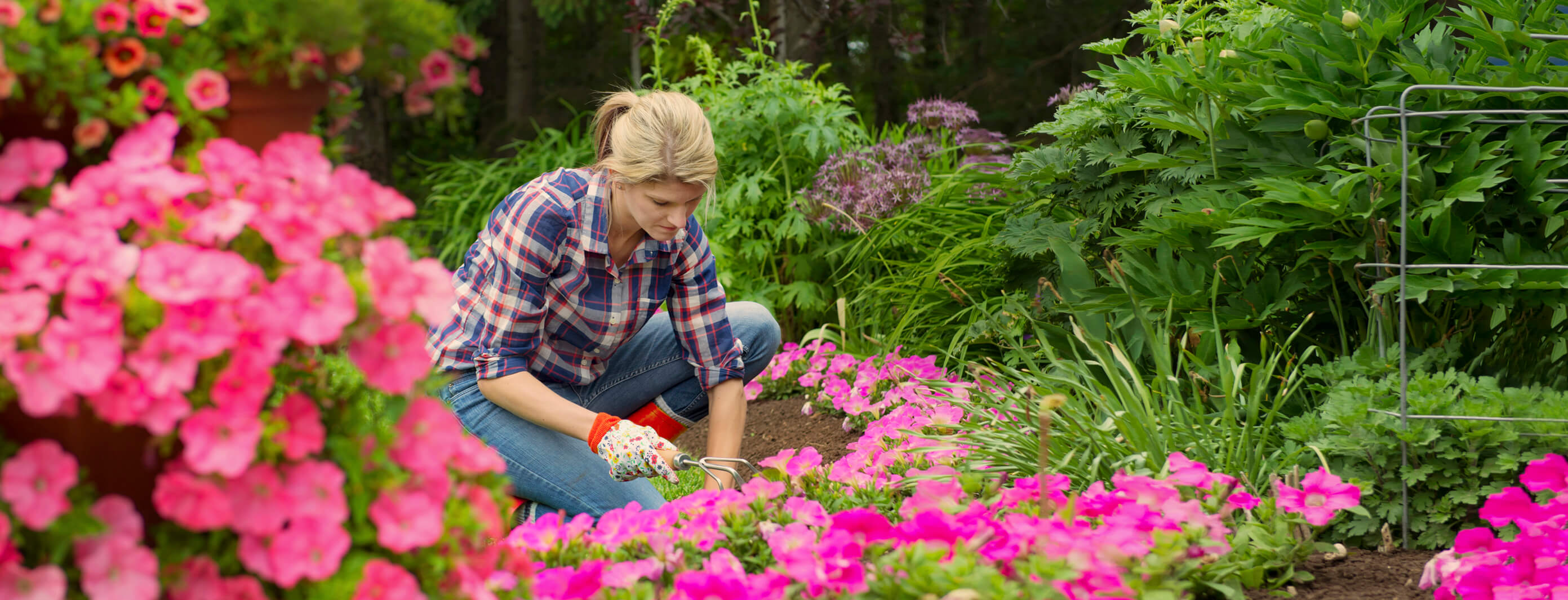 flower gardener using ploughman's choice compost